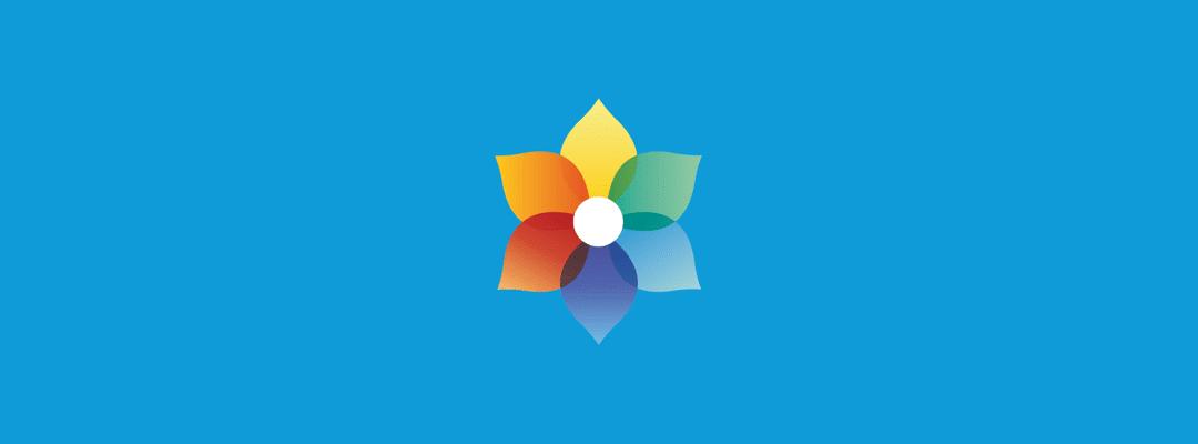 Bloom v1.2.0 update